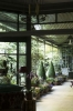jardin-mr-pierre-berg-paris-for-marie-claire-maison-italy